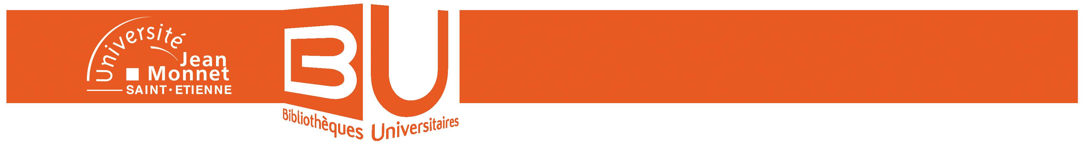 BU_orange_sans_fond_4.png